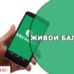 Услуга Живой баланс от Мегафон — особенности подключения и отключения