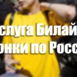 Услуга Билайн «Звонки по России» — описание, подключение и отключение