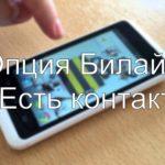 Опция «Есть контакт» от Билайн: способы подключения и отключения услуги