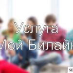 Услуга «Мой Билайн»: описание, особенности подключения и отключения опции