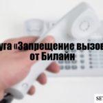Услуга «Запрещение вызовов» от Билайн: как установить и снять запрет на звонки