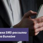 Блокировка SMS-рассылки на Билайне — как отключить информационные и рекламные оповещения на телефоне?