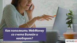 Как пополнить WebMoney со счета Билайн и наоборот?