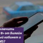 Как отключить услугу Билайн «Видеомир 18»: варианты отключения через телефон и интернет