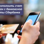 Как пополнить счет Билайн с банковской карты Сбербанка — способы оплаты через телефон или интернет