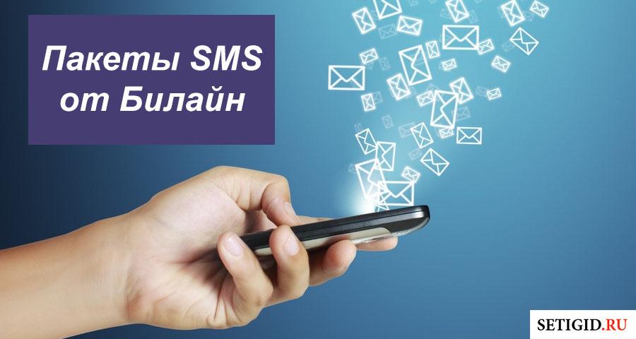 Пакеты SMS от Билайн: описание, подключение и отключение опций