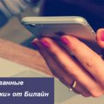 «Таргетированные SMS-рассылки» от Билайн: описание и стоимость сервиса для бизнеса