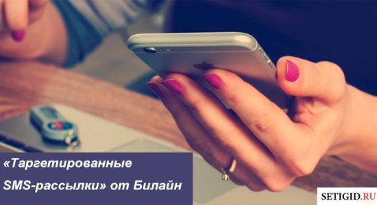 Таргетированные SMS-рассылки от Билайн=
