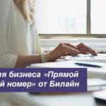 Услуга для бизнеса Билайн «Прямой городской номер»: описание опции, подключение и отключение