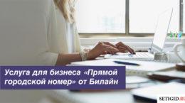 Услуга для бизнеса «Прямой городской номер» от Билайн