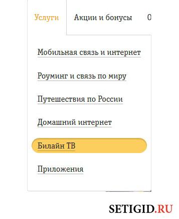 Скриншот раздела услуг в личном кабинете Билайна