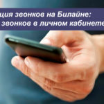 Детализация звонков на Билайне: контроль звонков в личном кабинете