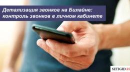 Детализация звонков на Билайне