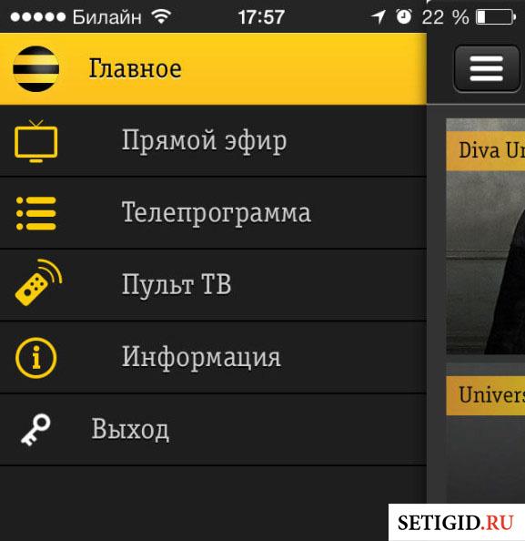 Экран мобильного телефона с приложением Билайн ТВ