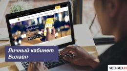 Вход в региональный личный кабинет Билайн на официальном сайте