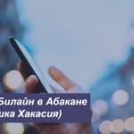 Описание новых тарифов Билайн в Абакане (Республика Хакасия) для мобильного телефона, планшета и ноутбука