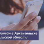 Описание выгодных тарифов Билайн в Архангельске и Архангельской области для мобильного телефона, планшета и модема