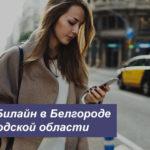 Описание выгодных тарифов Beeline в Белгороде и Белгородской области для телефона, планшета и ноутбука