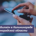 Описание тарифных планов Beeline в Калининграде и Калининградской области для смартфона, планшета и модема