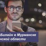 Описание тарифов Билайн в Мурманске и Мурманской области для мобильного телефона, планшета и модема