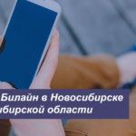 Описание актуальных тарифных планов Beeline в Новосибирске и Новосибирской области для смартфона, планшета и модема