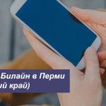 Описание актуальных тарифных планов Beeline в Перми (Пермский край) для телефона, планшета и модема