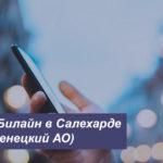 Описание выгодных тарифов Beeline в Салехарде (Ямало-Ненецкий АО) для смартфона, планшета и модема