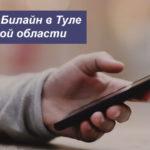 Описание выгодных тарифов Beeline в Туле и Тульской области для мобильного телефона, планшета и ноутбука