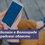 Описание действующих тарифов Билайн в Волгограде и Волгоградской области для телефона, планшета и модема