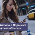 Описание действующих тарифных планов Билайн в Воронеже и Воронежской области для мобильного телефона, планшета и модема