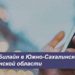 Описание актуальных тарифных планов Beeline в Южно-Сахалинске и Сахалинской области для мобильного телефона, планшета и модема