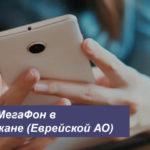 Описание выгодных тарифов МегаФон в Биробиджане (Еврейской АО) для телефона, планшета и ноутбука