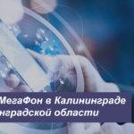 Описание тарифных планов МегаФон в Калининграде и Калининградской области для телефона, планшета и модема