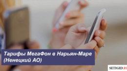 Описание тарифов МегаФон в Нарьян-Маре (Ненецкий АО)