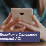 Описание тарифов MegaFon в Салехарде (Ямало-Ненецкий АО) для смартфона, планшета и ноутбука