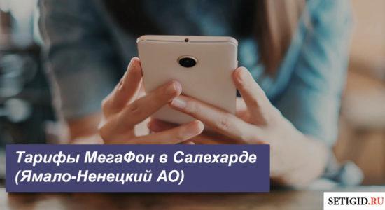 Описание тарифных планов MegaFon в Салехарде (Ямало-Ненецкий АО)